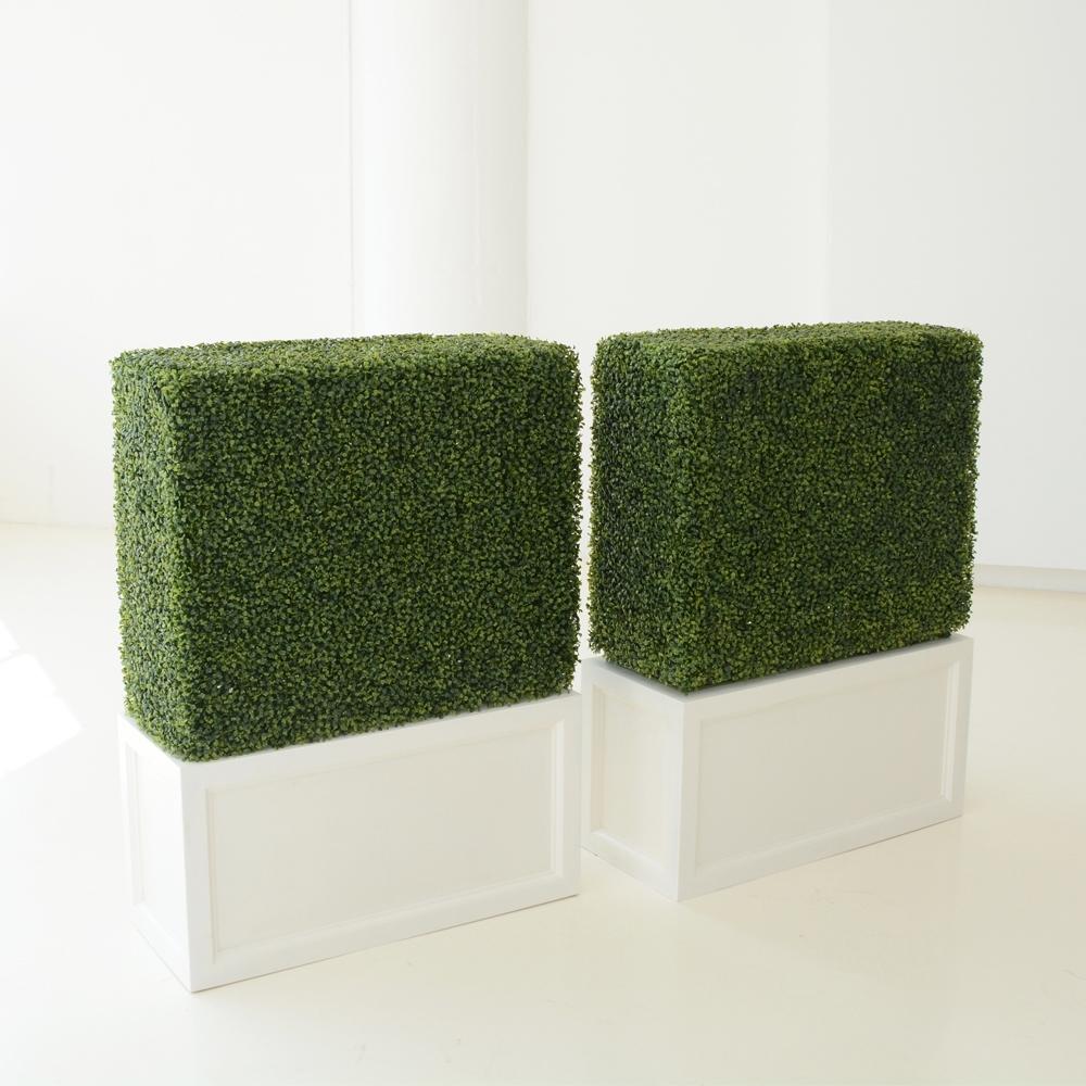 faux hedge 30