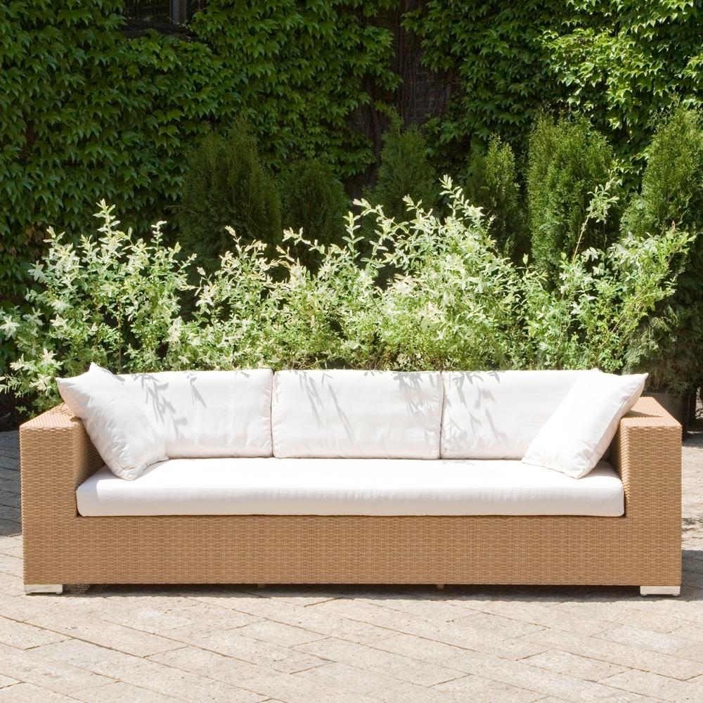 java sofa honey